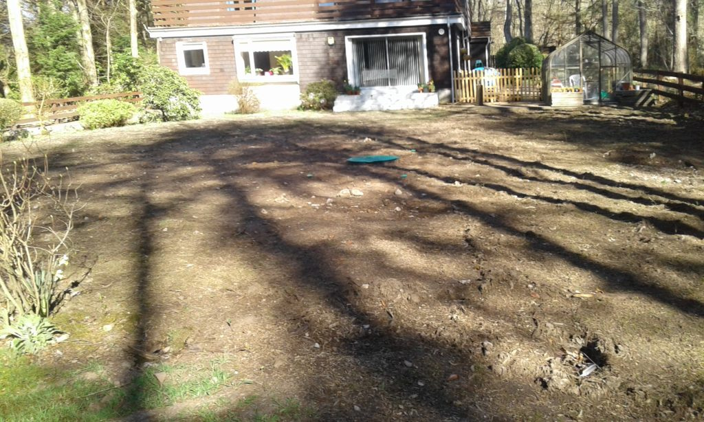 Original state of garden before commencement of project