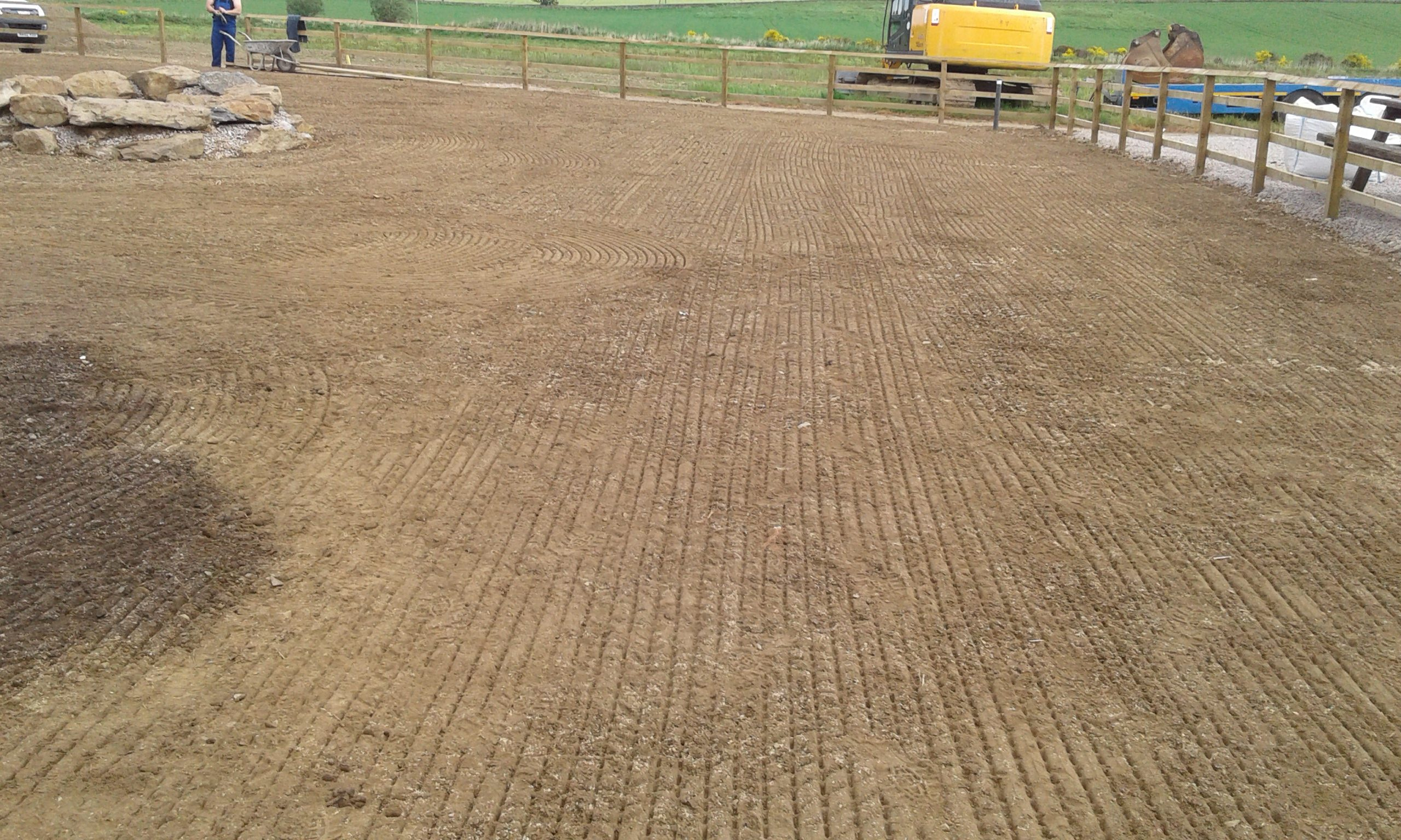 Seeded and consolidated with roller.