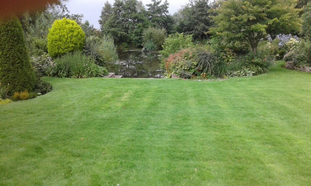 Laid in 2016. New turf project with on-going maintenance and fertilisation.